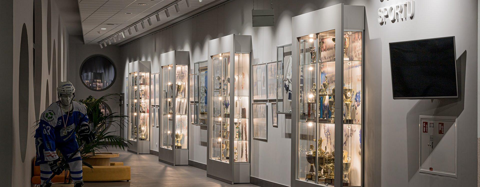 gablota szklana - gabloty wystawiennicze, muzealne, wystawowe, ekspozycyjne